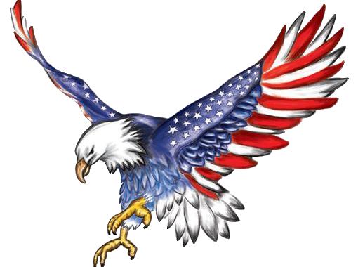 American-Flag-Eagle